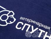 Синие толстовки с логотипом «Спутник»