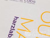 Белые футболки с логотипом «HARZ Labs»