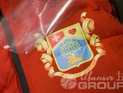 Красные с капюшоном жилеты с гербом «В движении жизнь»