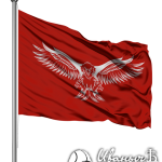 Срочная печать флагов